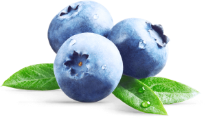 Image of 3 blueberries